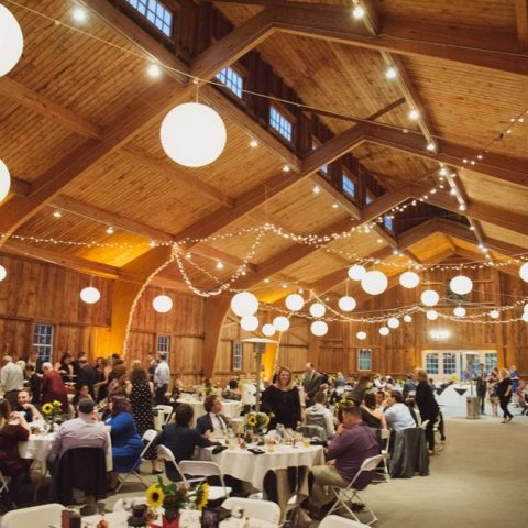 Bistro Lighting Rental in Rochester, NY