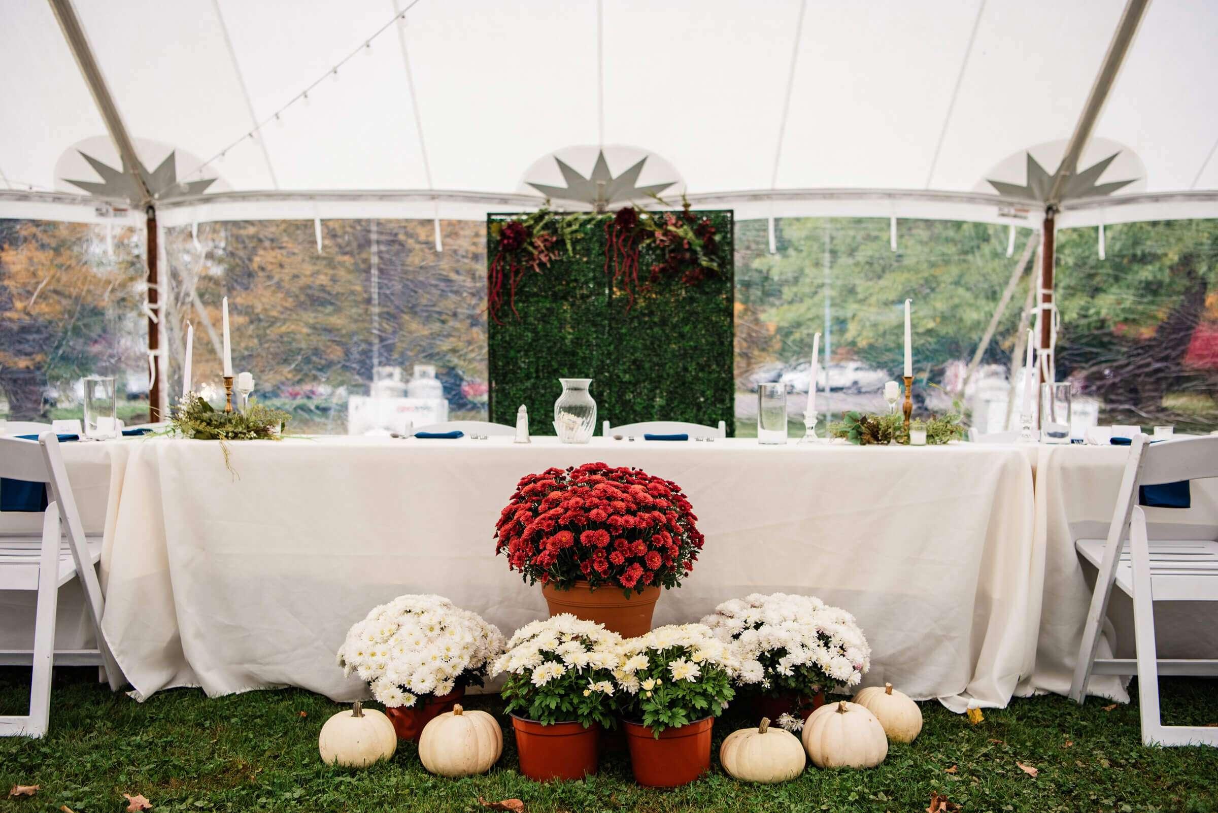 Summer Wedding in Rochester, NY